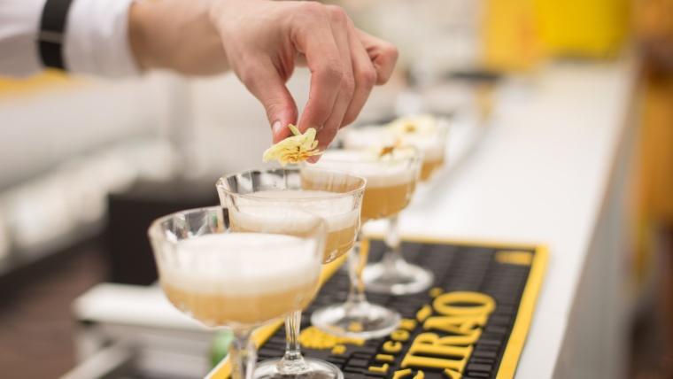 Avantages de la formation pro CQP Barman Monde de la Nuit - Barman Académie Lyon région Auvergne Rhône-Alpes